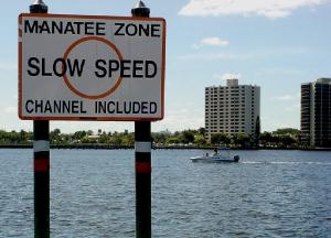 Manatee zone – Boating tips - Fort Myers - Richardson Custom Homes